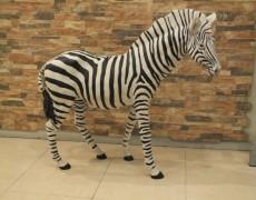 Afrika Zebra Heykeli