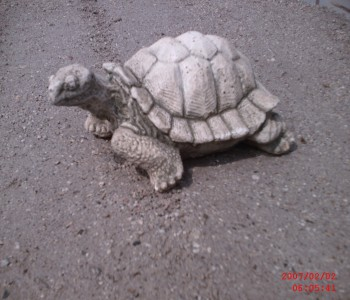 Kaplumbağa Heykeli