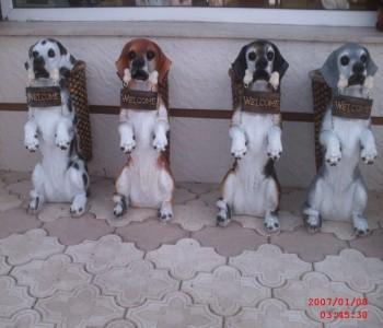 Şemsiyelik Köpek Heykeli