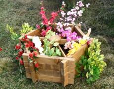 6 Köşeli Çiçeklik