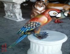Papağan Heykeli