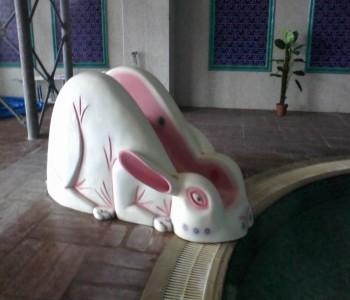 Tavşan Kaydırak