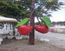 Kiraz Ağaç  Maketi