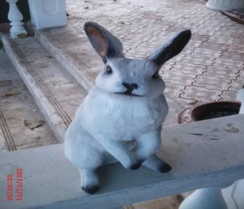 Uzun Kulaklı Tavşan Heykeli