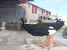 Antik Deve kuşu Heykeli