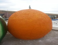 Büyük Portakal Maketi