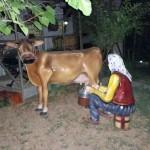 Süt Sağan Kadın Heykelleri