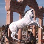 Dekoratif At Figürleri