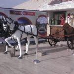 Dekoratif At Arabası Ve At Figürü